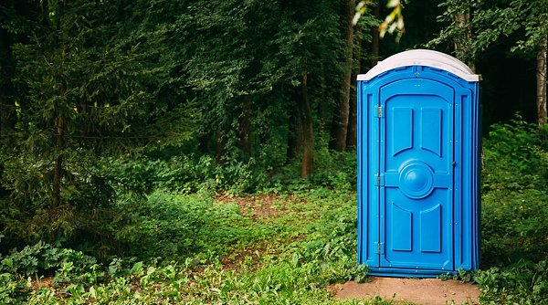 Cabin Of Chemical Toilet In Green Summer Forest