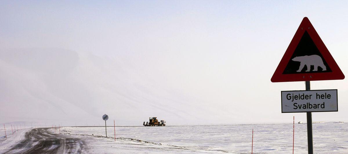 D11 transporteres på trekkvogn innover Adventdalen. Foto: Martin Øen.