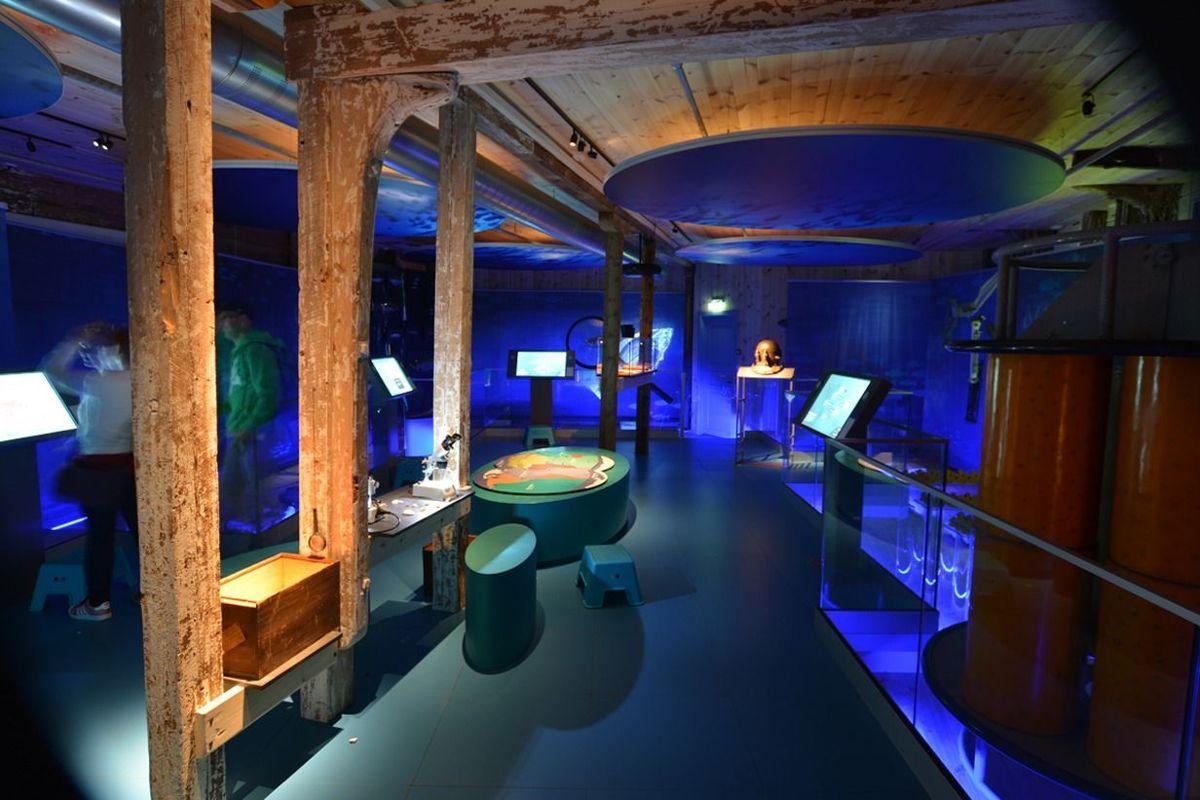 Norges Fiskerimuseum er nominert i kategorien Åpen klasse. Foto: Redlight Design