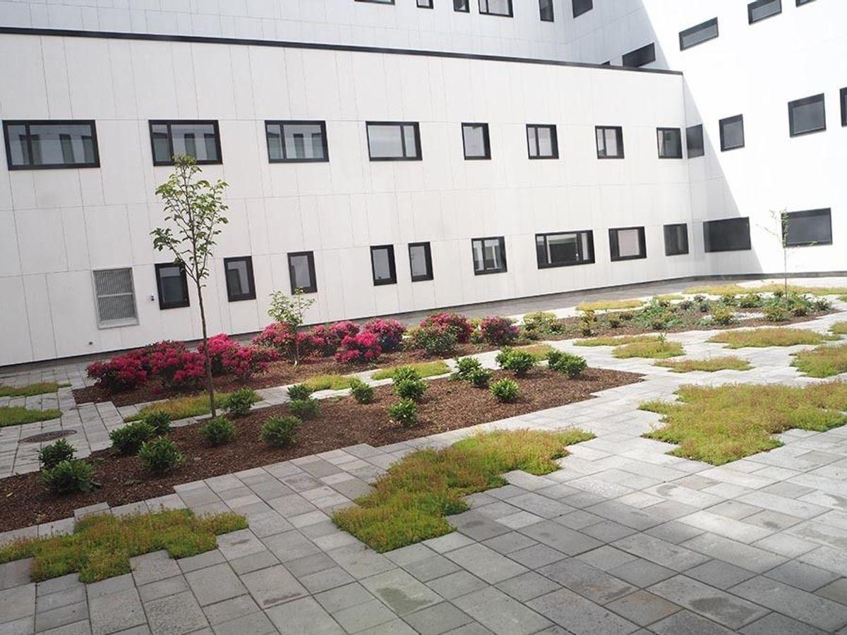 Foto: Prosjekt Nytt Østfoldsykehus