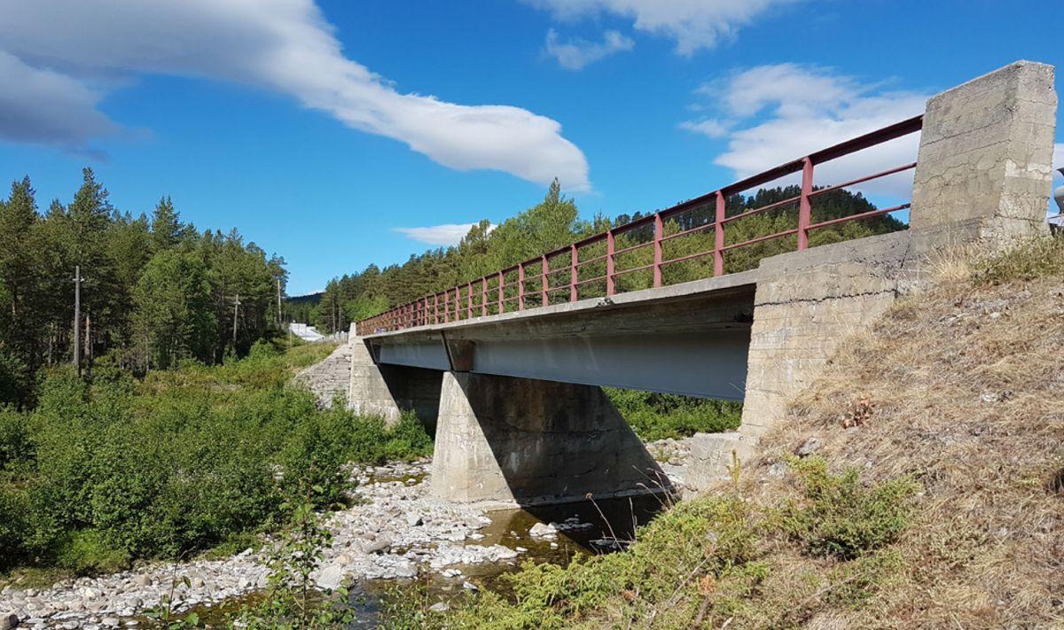 Dagens Einunna bru ble bygget i 1954. Brua er totalt 41,3 meter lang, fordelt på to spenn. Foto: Statens vegvesen