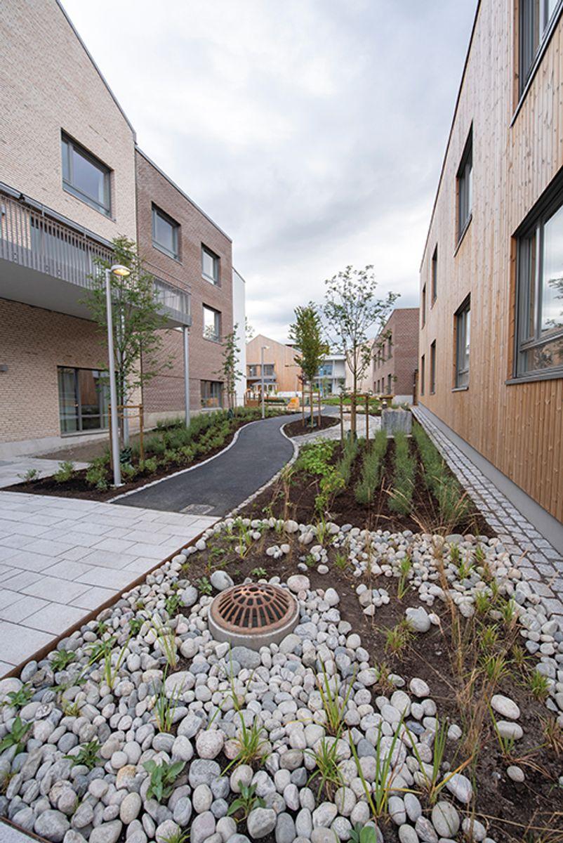 Carpe Diem demenslandsby på Dønski i Bærum, 10.8.2020 Foto: Trond Joelson, Byggeindustrien