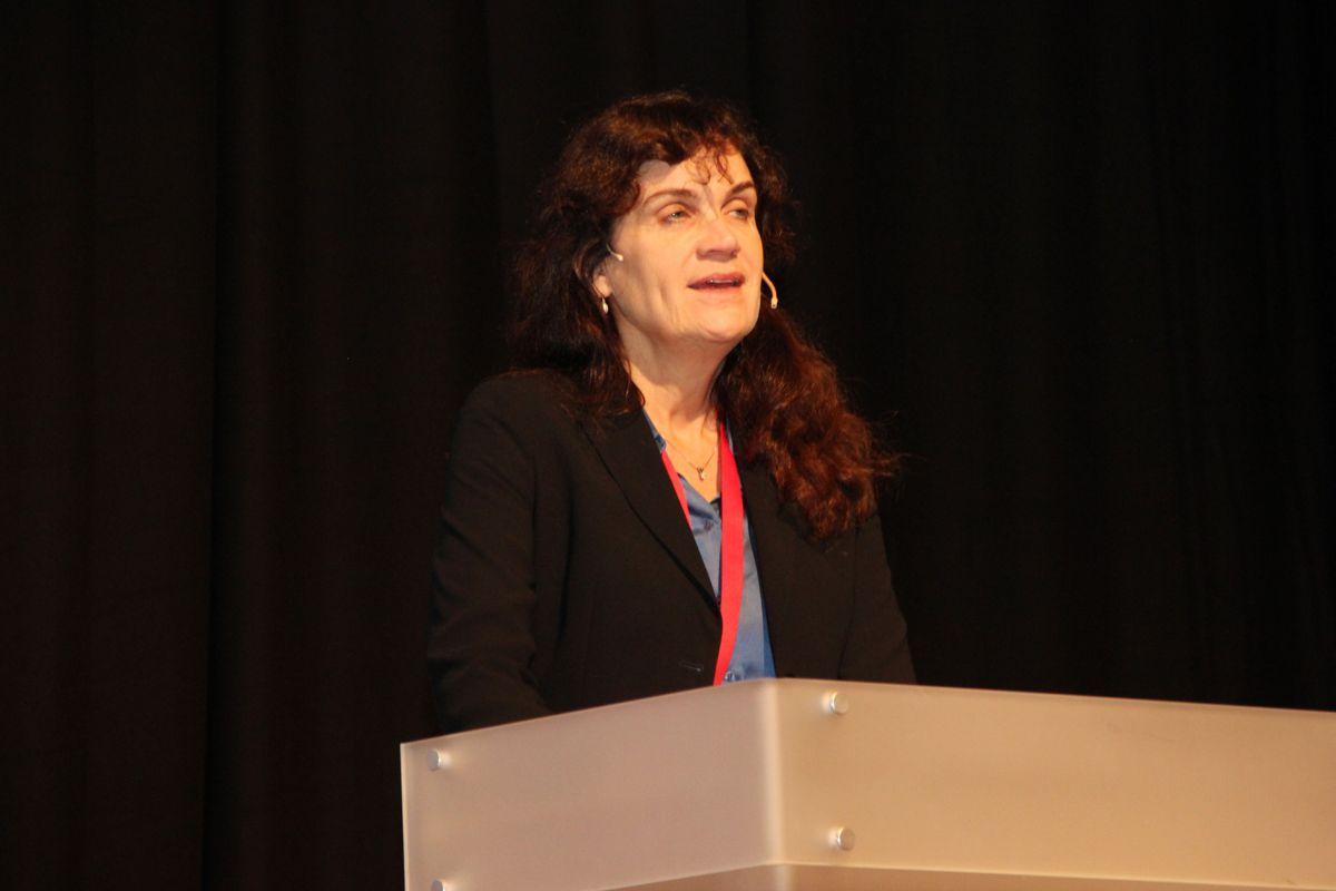 Regiondirektør Borghild Lekve i Arbeidstilsynet snakket om erfaringene med samordnet innsats mot arbeidsmiljøkriminalitet. Foto: Svanhild Blakstad