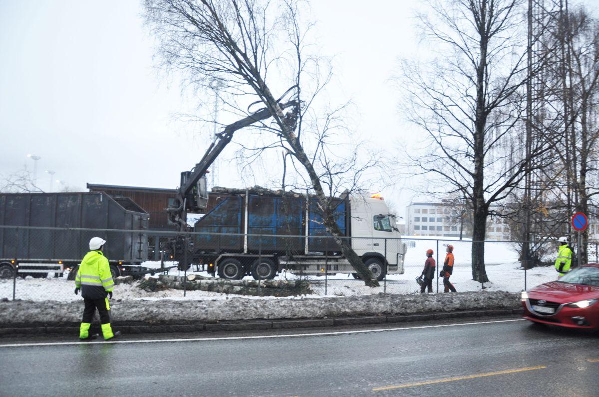 Foto: Statens vegvesen