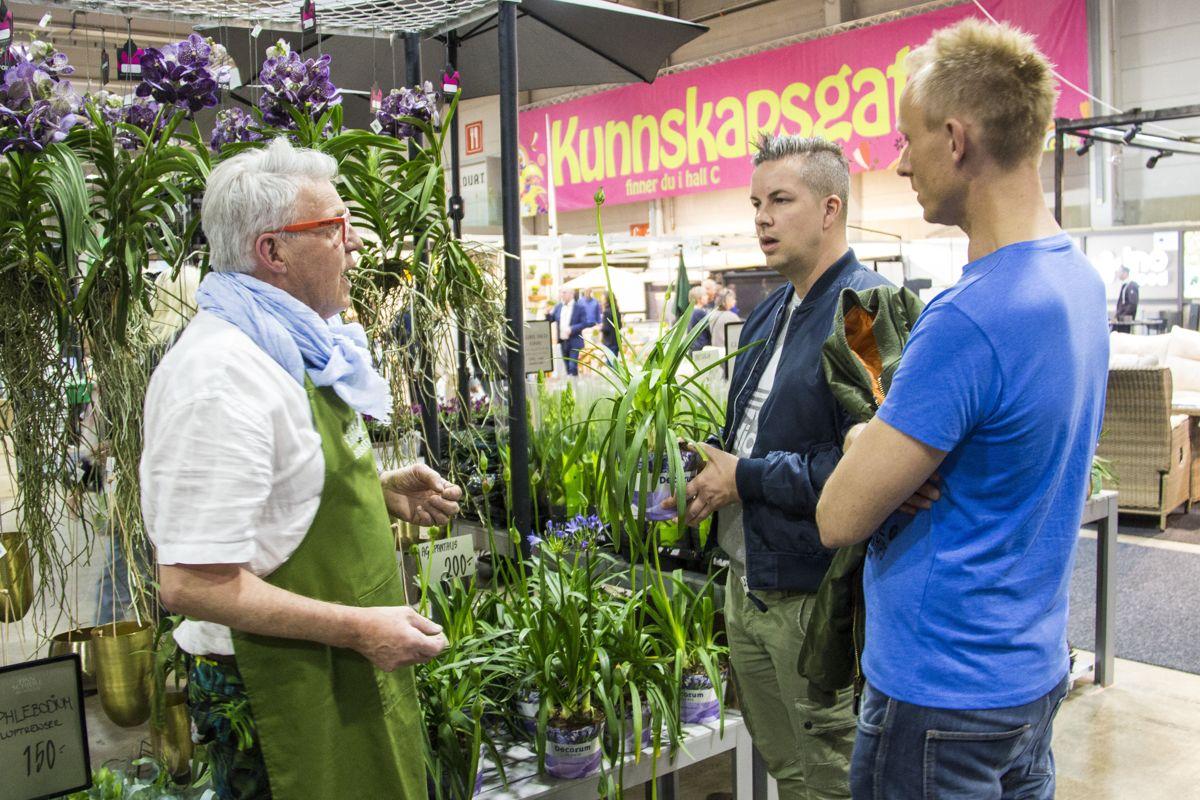 Finn Schjøll gi plantetips til Kent og Pekka, som har kolonihage på Solvang i Oslo. Foto: Madeleine Bergheim