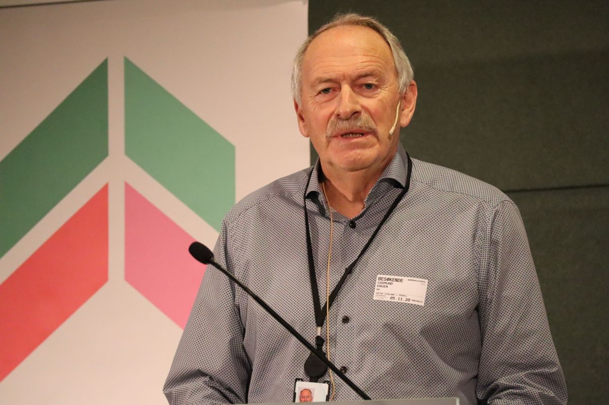 Gudmund Engen, prosjektleder BNL. Foto: Svanhild Blakstad