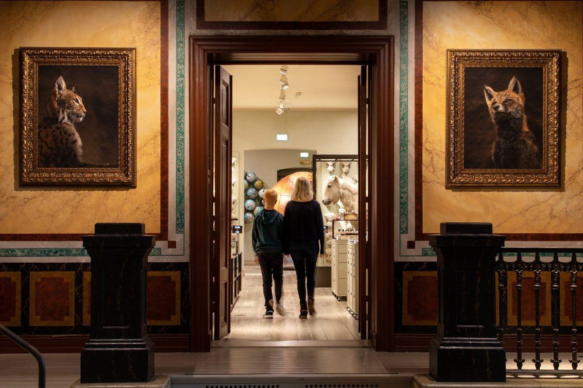 Universitetsmuseet i Bergen – Naturhistorisk Museum. Foto: Lyskultur