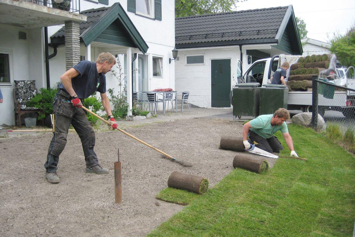 Skal du legge ferdigplen, må du sørge for godt grunnarbeid. (Foto: Per Helge Pedersen)
