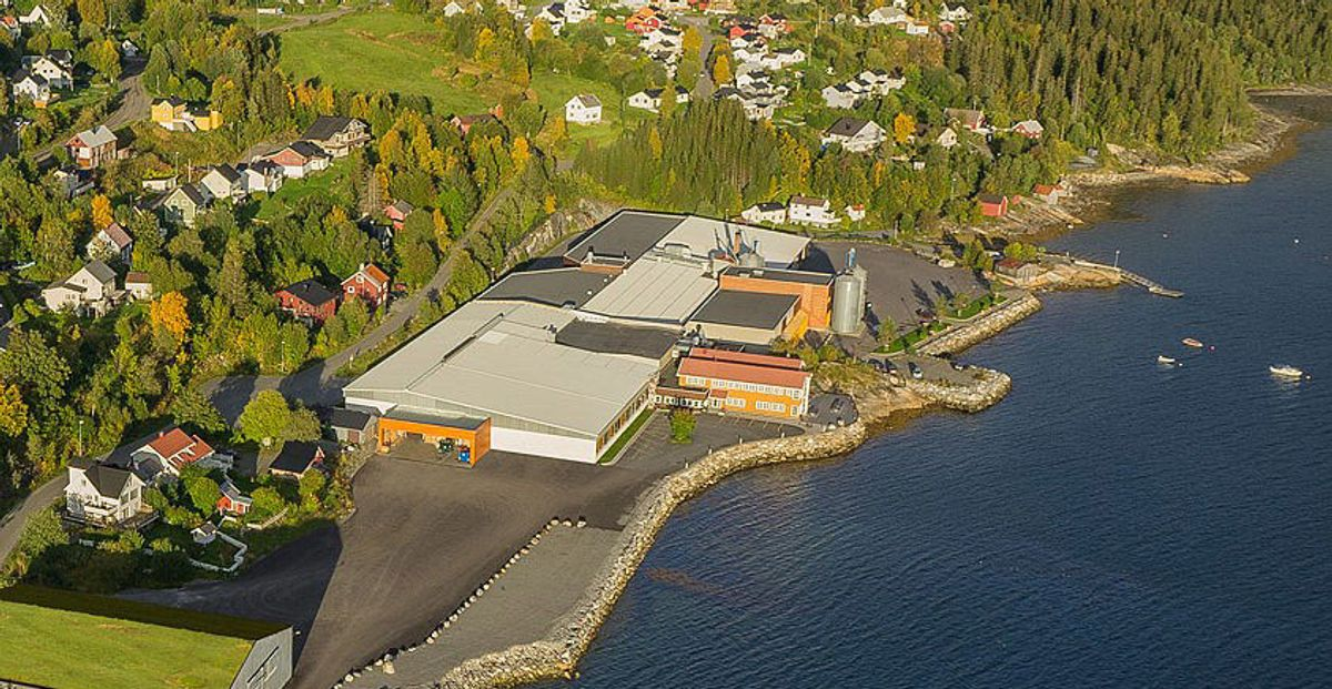<p>Trenors fabrikk på Hemnesberget i Nordland fylke.</p>