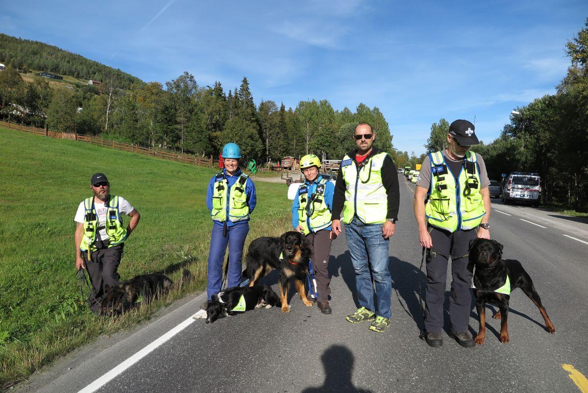 Geilo 20140903. Fire hunder fra Norske Rednings blir brukt i søk rundt stedet der tre personer omkom i en sprengningsulykke onsdag. Foto: Steinar Bleken / NTB scanpix