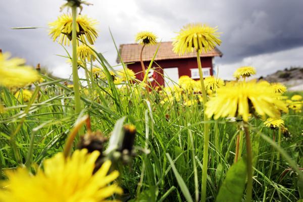 Hytteeierne vant ikke fram i lagmannsretten. Foto: Lise Åserud / NTB