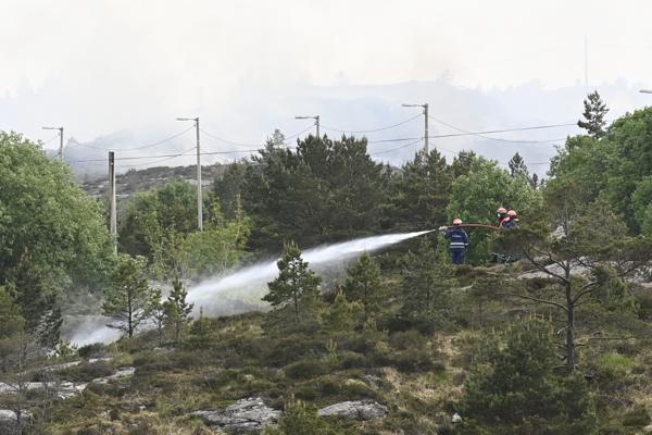 Det brenner flere steder på Spjeldsfjellet i Sotra – i samme område hvor det brant kraftig i forrige uke. Foto: Marit Hommedal / NTB