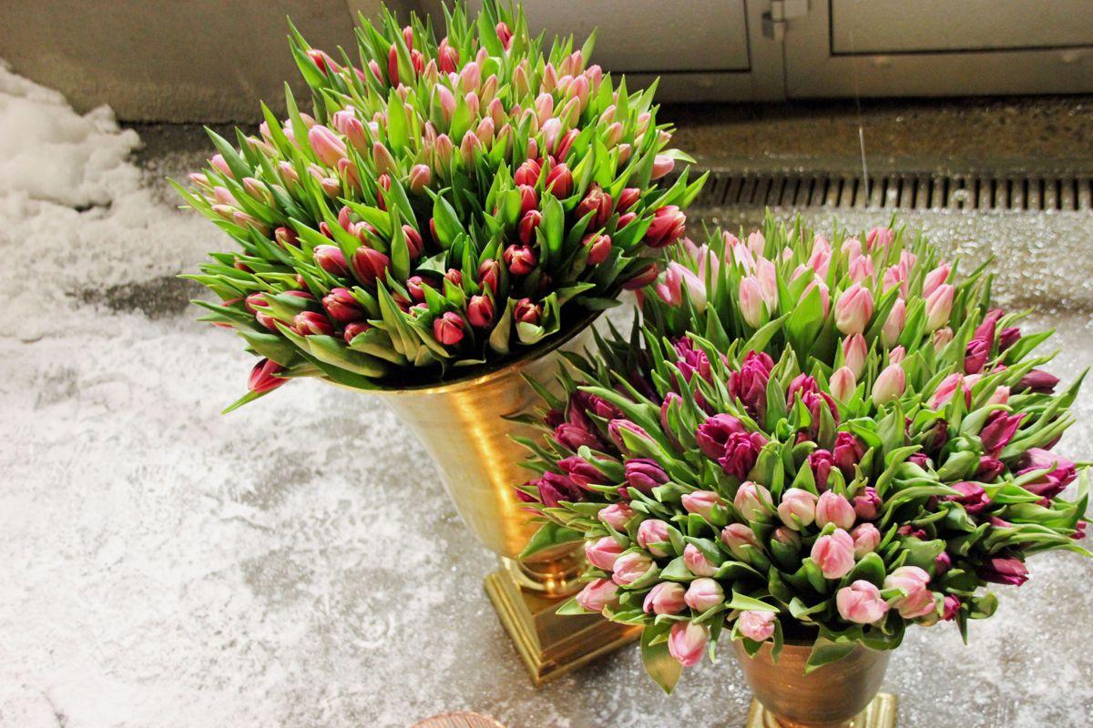 Tulipaner gjør seg i overdådige vaser. Foto: Svanhild Blakstad