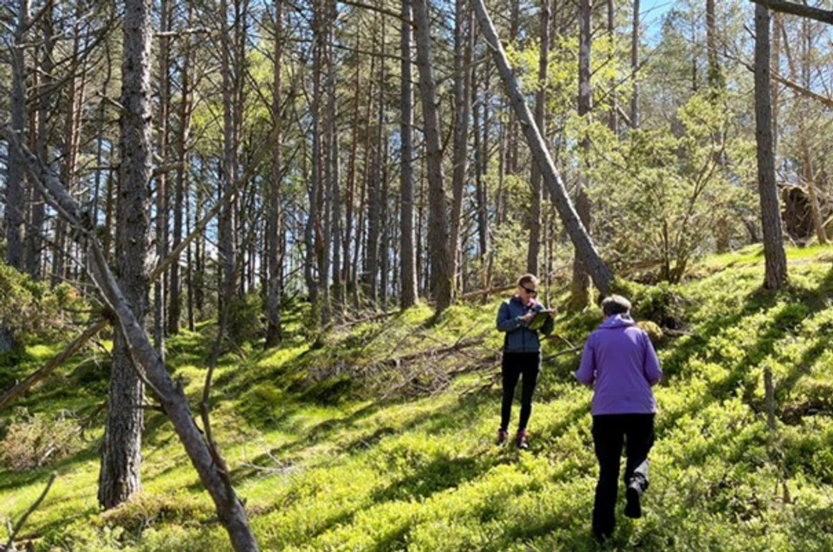 Statens vegvesen stiller store krav til beskyttelse av klima og miljø i sine prosjekter. Her er er byggherren på befaring på Tysnes mai 2021.