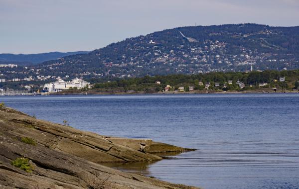 Bestanden av torsk og blåskjell i Oslofjorden har slitt den senere tiden. MDG mener at en løsning kan være å totalfrede hele fjorden. Illustrasjonsfoto: Geir Olsen / NTB