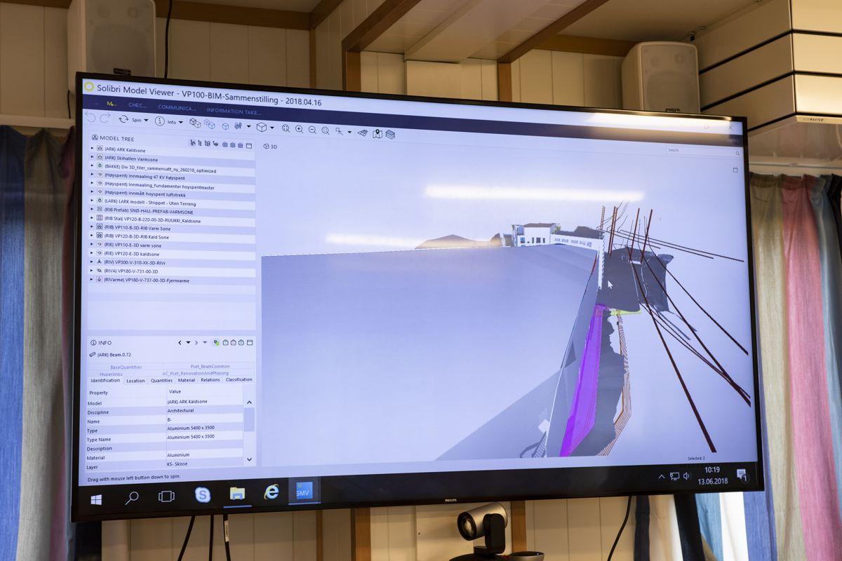 3D-modell av vinterparken som viser utfordring med høyspentmaster. Foto: Tuva Skare
