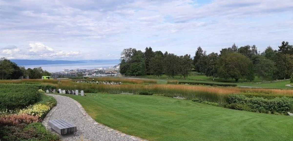 Havstein kirkegård i Trondheim. Foto: Naml