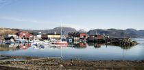 Lurøy er en kommune rik på fisk og lokalt eierskap som som gir en skatteinngang mange andre kommuner bare kan drømme om. De neste fire årene blir det Høyre-ordfører for laksekommunen. Foto: Rami Skonseng