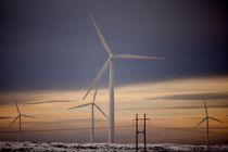 Vindmøller på Smøla. Noen kommuner mener de allerede har bygget ut nok vindkraft, andre mener kostnaden for naturen blir for høy. Det er ulike grunner, men de aller fleste potensielle vindkraftkommunene i Norge sier nei til mer vindkraft. Arkivfoto: Eivind Natvig