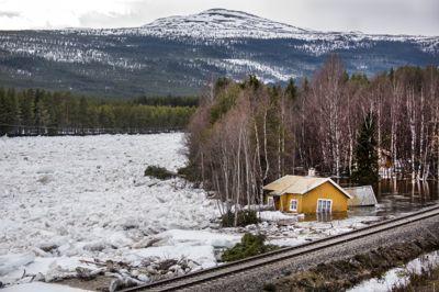 Flom i Glomma, Rendalen kommune, etter isgang med «ispropp» som løsnet.
