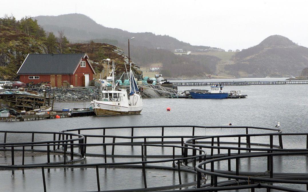 Leka i Trøndelag er en av få kommuner uten registrert koronasmitte.