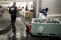 Svært få går lenge på sosialhjelp i Øksnes, som forsøker å kvalifisere flest mulig til arbeidslivet. Bildet er fra Myre fiskemottak. Arkivbilde: Magnus K. Bjørke