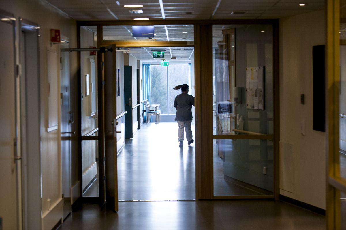 Ill.foto: Magnus Knutsen Bjørke