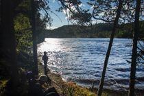 Statskog har siden 2011 solgt mange eiendommer og eier i dag skog i 44 prosent av norske kommuner. Det bekymrer Norges Jeger- og Fiskerforbund, som frykter mange ikke har tilgang til friluftsliv. Foto: Gorm Kallestad, NTB scanpix