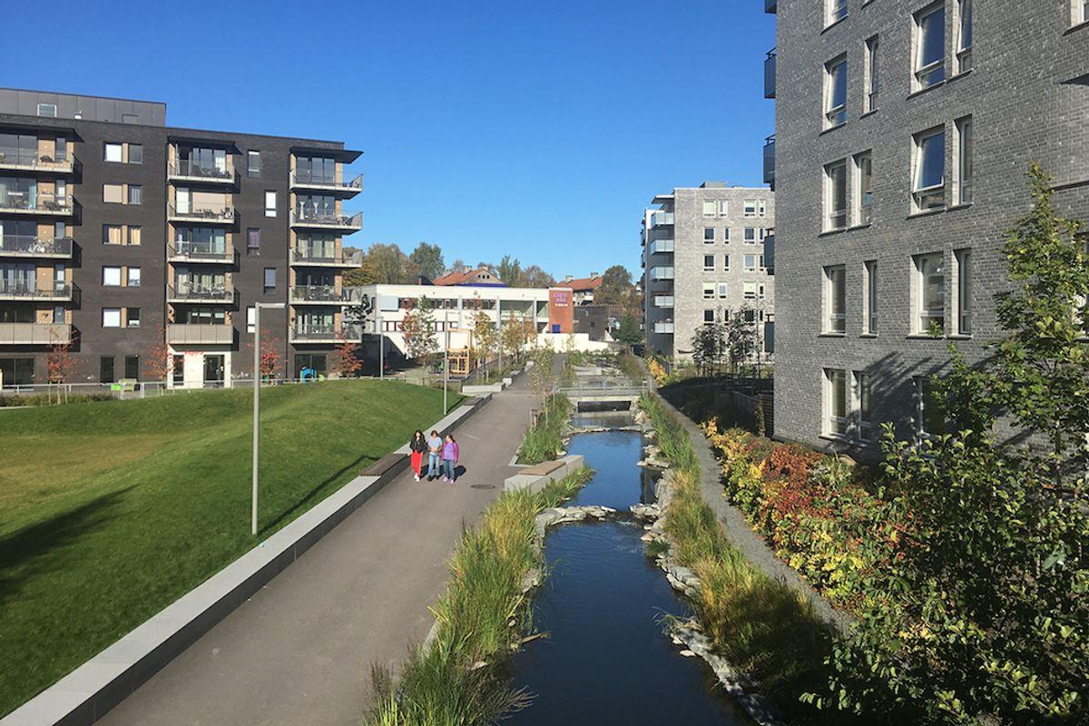 Oslo er best på klimatilpasning, viser ny undersøkelse. Her fra Hovinbekken som kommunen har åpnet og hvor det er laget vannspeil for å ta unna overvann.