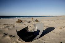 <p>– Norge bør være verdensledende på tiltak for å stanse plastforsøplingen, mener WWF.</p>
