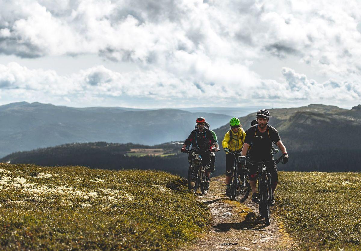 På Ringebufjellet kan du dra på guidede sykkeltur i sommer.