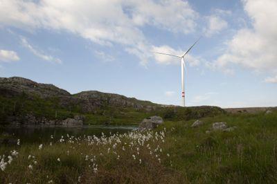 Det har vært og er konflikter rundt flere av vindkraftutbyggingene her til lands, inkludert Vardafjellet vindkraftverk i Sandnes kommune, som dette bildet er hentet fra.