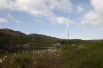 <p>Det har vært og er konflikter rundt flere av vindkraftutbyggingene her til lands, inkludert Vardafjellet vindkraftverk i Sandnes kommune, som dette bildet er hentet fra.</p>