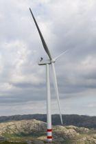 <p>78 prosent i denne undersøkelsen sier seg helt eller delvis enig i at naturen må ivaretas i større grad ved framtidig vindkraftutbygging.</p>