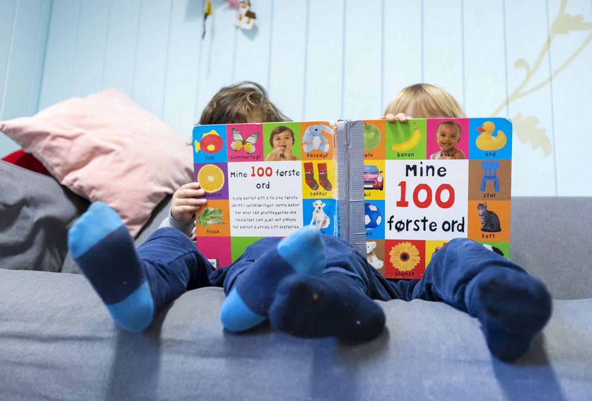 Regjeringen vil at kommunene skal ha plikt til å ha oversikt over norskkunnskapene til barn før de begynner på skolen.