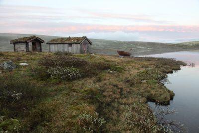 I Forollhogna nasjonalpark har verneområdestyrene gitt mange dispensasjoner knyttet til tilbygg og motorferdsel til tradisjonelle buer og hytter.