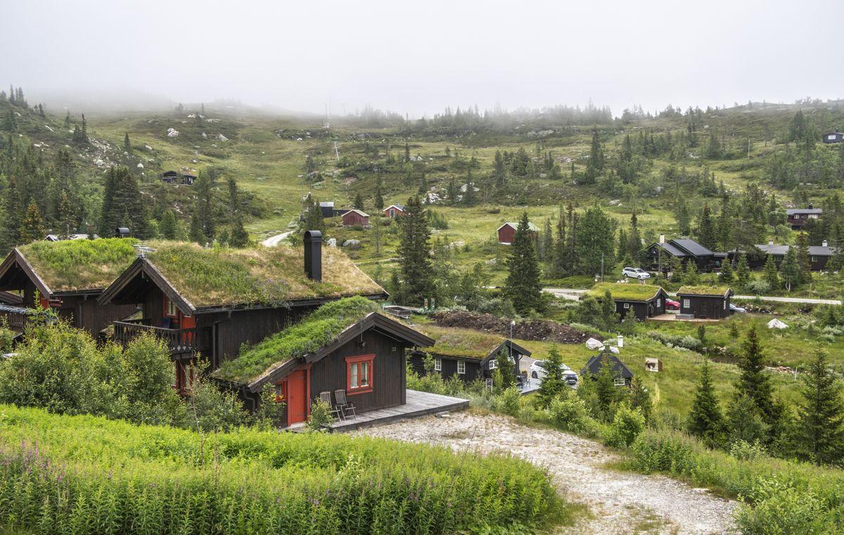 Alle forutsetninger for god politisk styring av hytteutbyggingen ligger i plan- og bygningsloven, skriver Morten Aas.