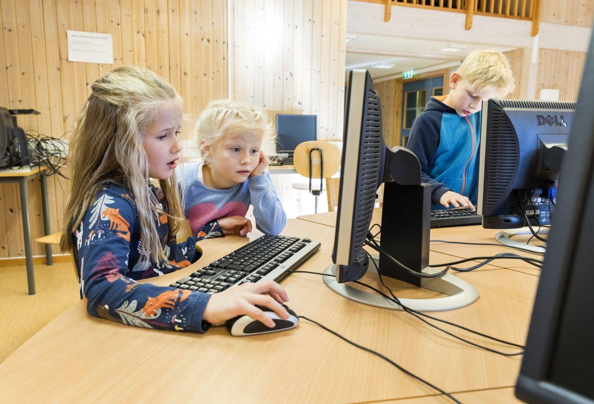 Målet til FriDA er å gi eleven og læreren et så godt tilbud som mulig, inkludert muligheten til å kunne dele og bearbeide den informasjonen som er i læremidlene, skriver Eirik Hellan.