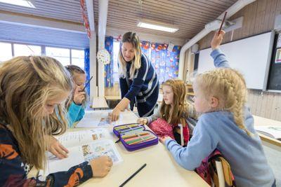 I dag er det lærerspesialister innenfor blant annet realfag, norsk lese- og skriveopplæring, yrkesfag, begynneropplæring for 1.-4. trinn og fremmedspråk.
