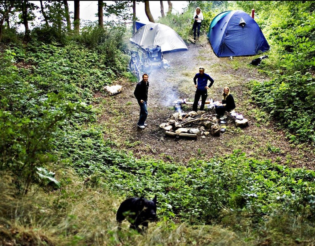 Brug altid kun de dertilindrettede områder, når du vil grille eller lave bål på offentlige steder i naturen. Foto: Ritzau Scanpix/ arkiv
