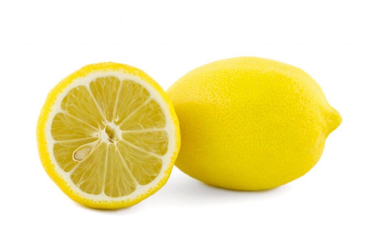 De kan heller ikke lide citron – eller bare duften af det – så du kan eventuelt overveje at skifte til rengøringsmiddel, der dufter af citron. Kilde: TV2. Arkivfoto.
