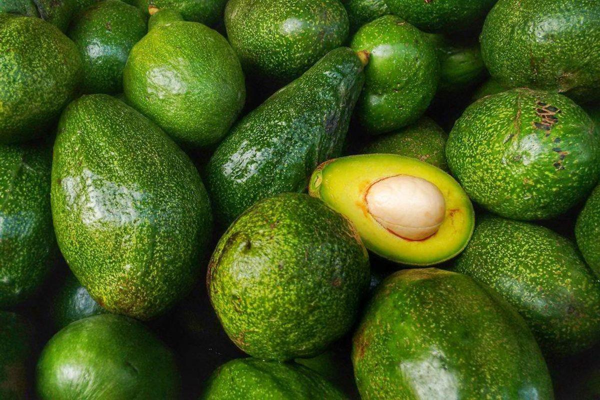 Avocado: Indeholder stoffet persin, som er meget giftigt for hunde. Det kan både resultere i opkast og diarré, men også give mere alvorlige reaktioner. Foto: Scanpix