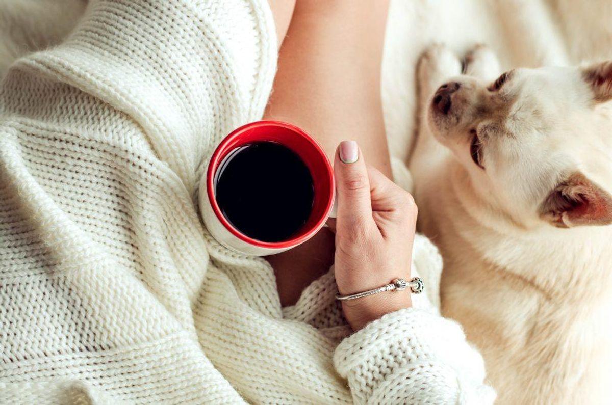 Kaffe: Kaffe – både kaffegrums og koffeinholdige drikke kan være skadelige for din hund. Foto: Scanpix