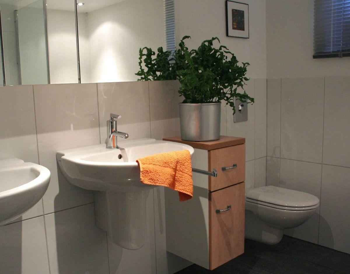 Det er også vigtigt at sørge for at rengøre toilettet og toiletvasken ofte, da der er mange bakterier i netop det rum. Foto: Scanpix/ genre