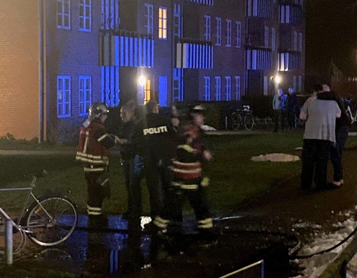 Foto: Presse-fotos.dk