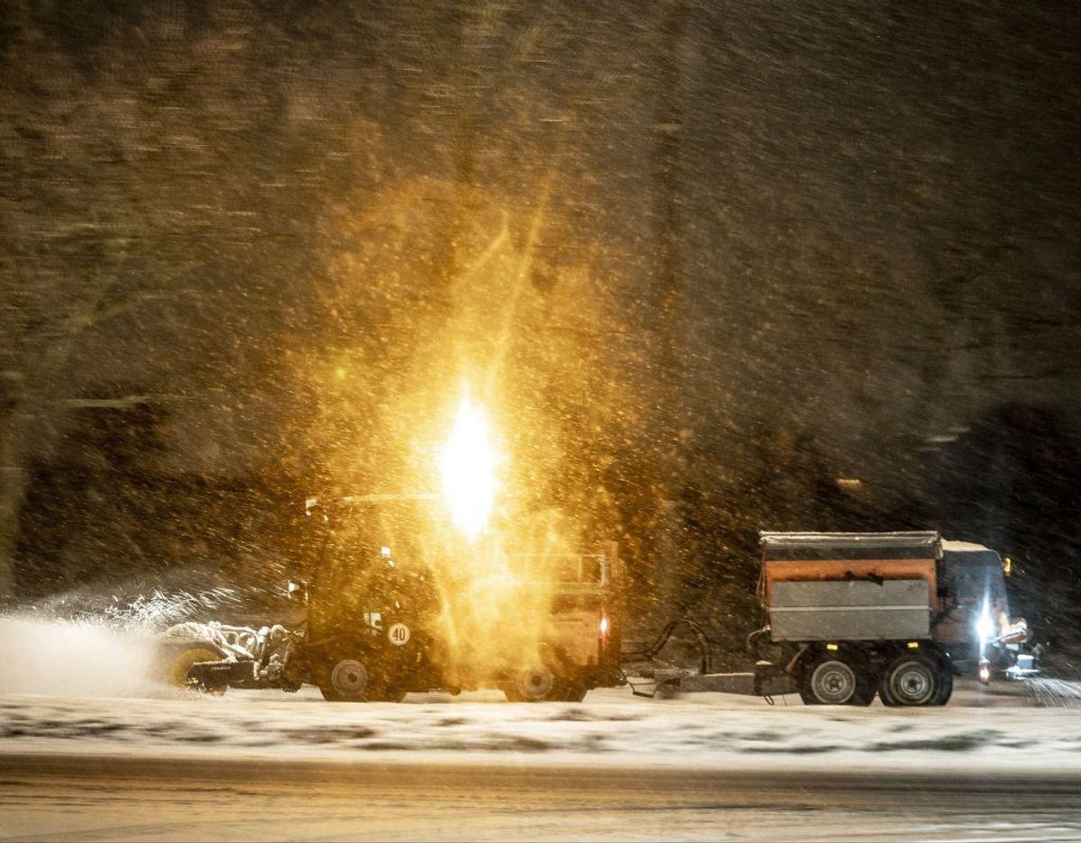 Ved hjælp af snepæle kan bilister og sneryddere bedre orientere sig på vejene. (Foto: Mads Claus Rasmussen/Ritzau Scanpix)