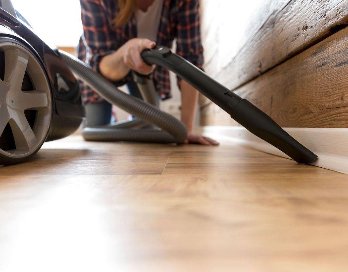 Støvsug grundigt i sprækker og revner. Det hjælper også at gøre meget rent.