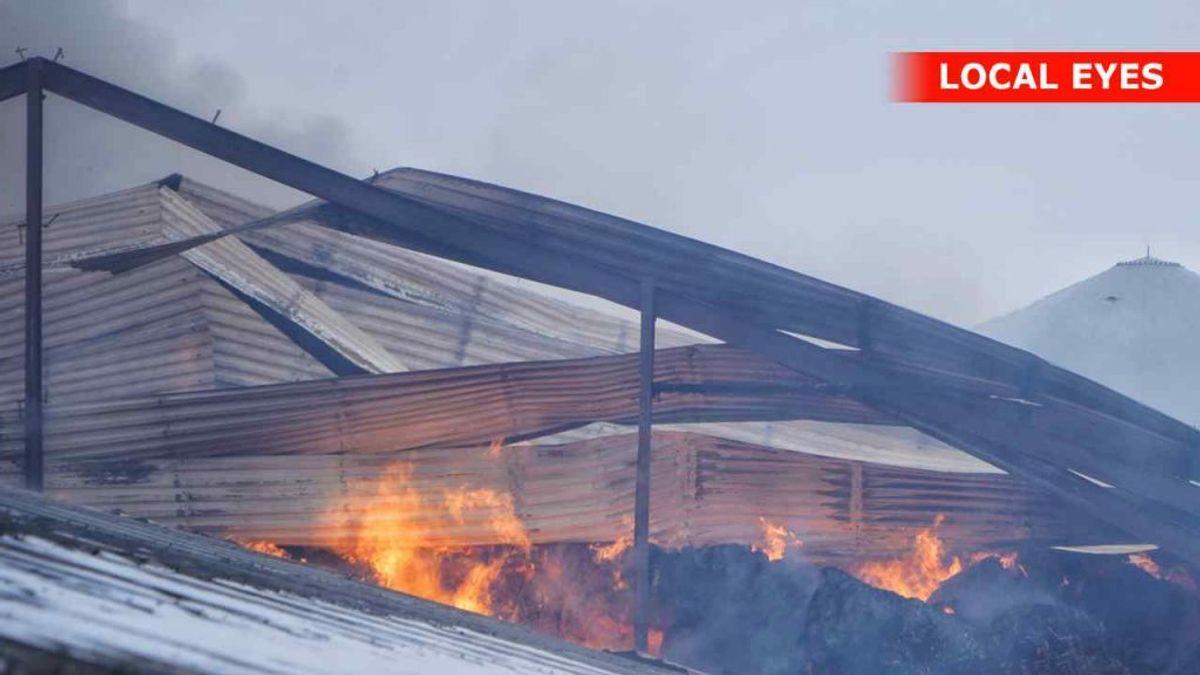 Tirsdag eftermiddag brænder det kraftigt i en tidligere minkfarm i landsbyen Løsning. KLIK FOR FLERE BILLEDER FRA STEDET. Foto: Local Eyes.