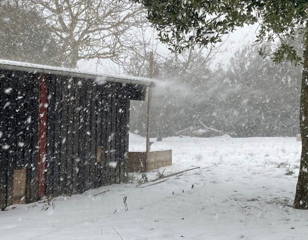 Sne i Nyborg. Foto: Louise Pedersen.