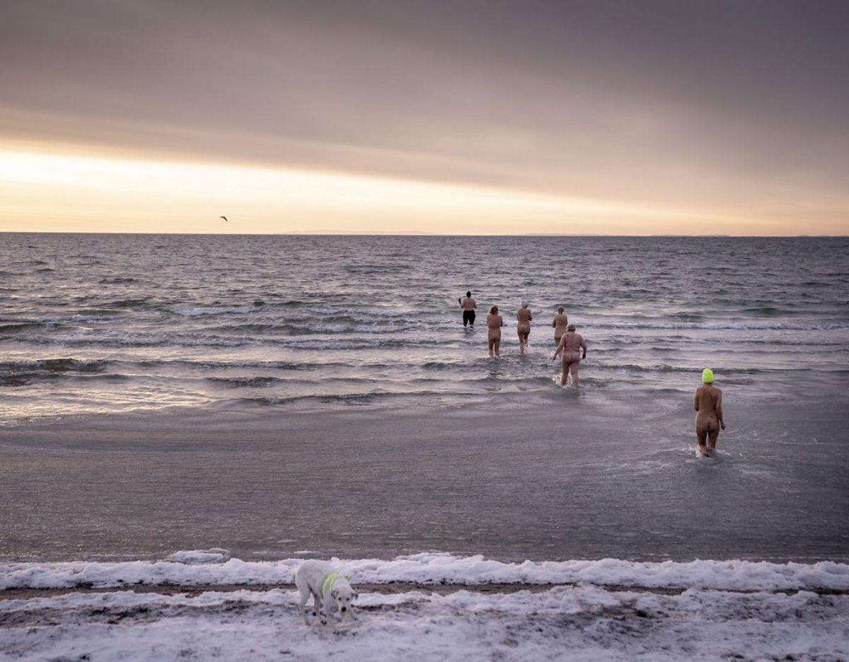 Vinterbadere bader i morgensolen omkring vandet ved havnen ved Faxe Ladeplads på Sydsjælland, mandag den 15. februar 2021.. (Foto: Mads Claus Rasmussen/Ritzau Scanpix)